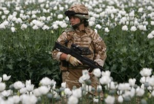 A British soldier keeps watch while on foot patrol in a poppy field in Musa Qala Afghanistan on March 28 2009 REUTERS - Omar Sobhani